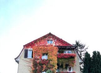Dom z dużym ogrodem